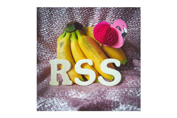 RSS DISCO - Summer 2016 (Mixtape)