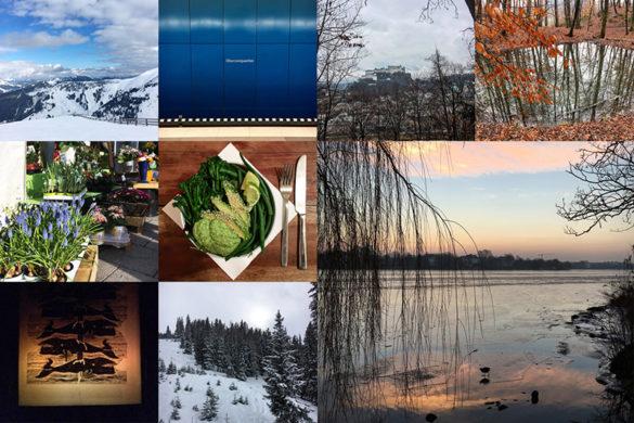 Mein Februar in Bildern